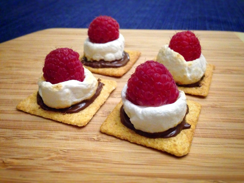 Raspberry S'more Bites